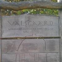 Valsgaard - Frühmittelalterliche Hofanlage