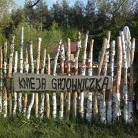 Knieja Gajowniczka