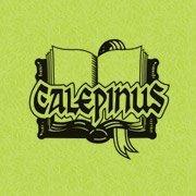 Calepinus Nyelviskola / Şcoală de limbi / Language School / Sprachschule