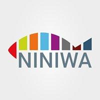 NINIWA - Oblackie Duszpasterstwo Młodzieży