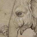Hanno Elefant