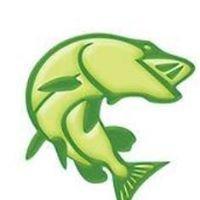 Falko Fish - profesjonaliści od ryb