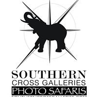 Southern Cross Galleries Photo Safaris