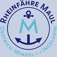 Rheinfähre Oestrich-Winkel - Ingelheim