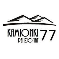 Pensjonat Kamionki 77