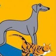 Pies czyli Kot Przychodnia Weterynaryjna