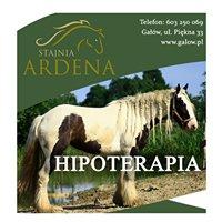 Hipoterapia Ardena