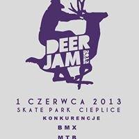 Skate Park Cieplice