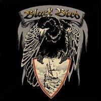 Black Bird Tattoo Parlour