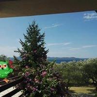 Dolac Guesthouse Zadar Croatia