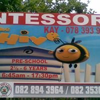 The Hive Montessori School