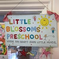 Little Blossoms Childcare Centre