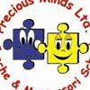 Precious Minds Creche & Montessori School