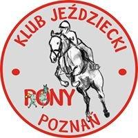 KJ PONY Poznań