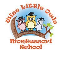 Wise Little Owls Montessori School