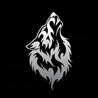 Lonewolf Mgmt | Booking/Promotions