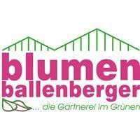 Blumen Ballenberger