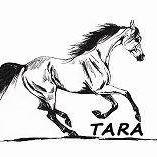 Ośrodek Hipoterapii i Jeździectwa TARA