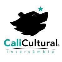 CaliCultural Intercâmbio