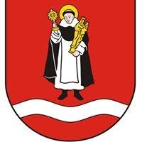 Gminny Ośrodek Kultury w Młodzieszynie