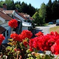 Tingvall  Eco Hotel  B&B