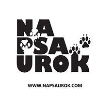 Na Psa Urok - Zoopsycholog i Pozytywny Treser