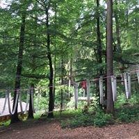 Kletterpark Tannenbühl