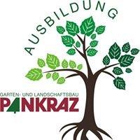 Ausbildung bei Pankraz