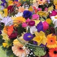 Gartencenter Blumen Sprockhoff