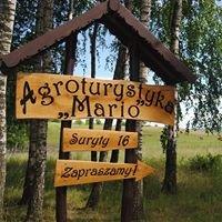 """Agroturystyka """"Mario"""""""
