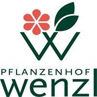 Pflanzenhof Wenzl
