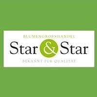 Star & Star Blumengroßhandel