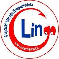 LINGO - Szkoła językowa