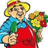 Peters Blumen- und Pflanzenmarkt