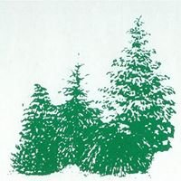 Edwin Smits Conifers