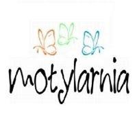 Motylarnia. Ośrodek Rozwoju Osobistego i Zawodowego dla Kobiet