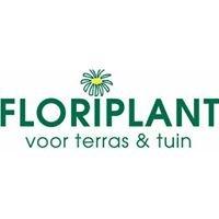 Floriplant