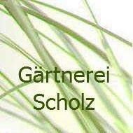 Gärtnerei Scholz Melchingen