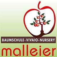 Baumschule Malleier