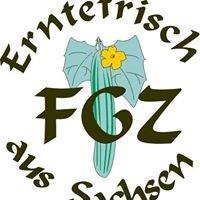 FGZ Kaditz