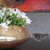 Pflanzen & Blumen Outlet
