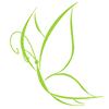 Papilio Gabinet - Medycyna estetyczna Kosmetologia ZĄBKI