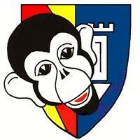 Wasener Carneval Club Ettlingen e.V. -WCC-