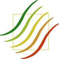 Kancelaria Audytorska: energooszczędnie i ekologicznie - doradzamy budujemy
