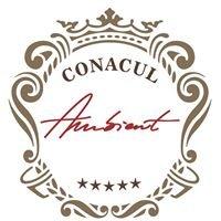 Conacul Ambient Brasov Romania - Live vintage. Love luxury