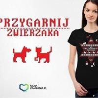 Schronisko Dla Bezdomnych Zwierząt w Łęczycy