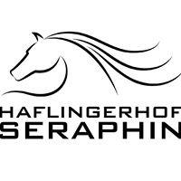 Haflingerhof Seraphin