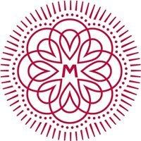 Mayr Energetik Institut