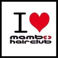 mambo-hairclub