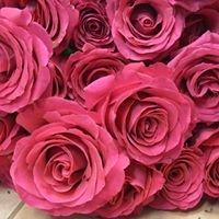 Kwiaciarnia Floristica Krakow